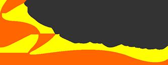 Denise Salgados Logo